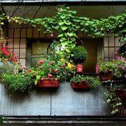 Oranžerija balkone