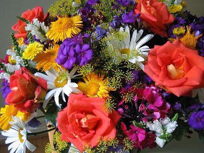 Puokščių priežiūra   Kambarinės gėlės